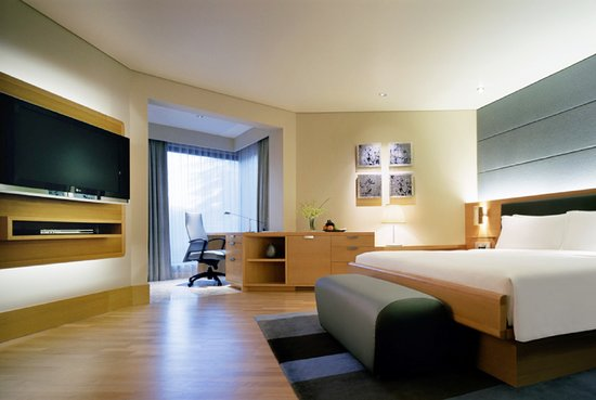 Grand Hyatt Singapore: Grand Room