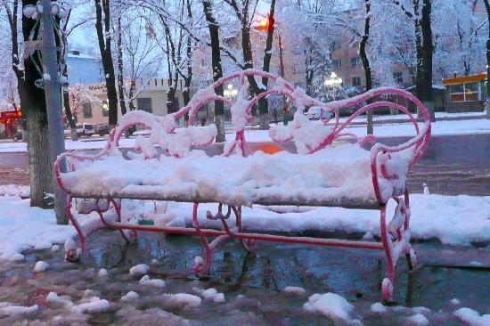 Shymkent - Romantic Town under snow
