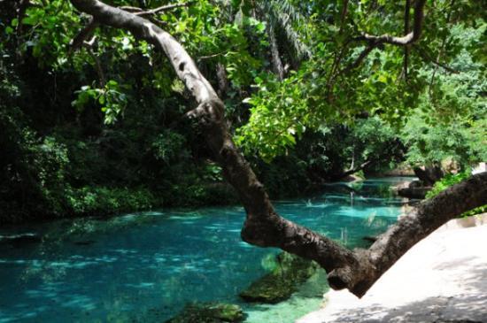 Yankari Game Preserve, Nigeria: A most awesome swimming hole, white sand bottom and cutting through lush tropical vegetation. Ac