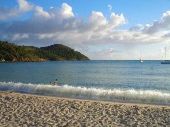 dating in st thomas usvi The american caribbean, the us virgin islands are diamonds among the blue waves this week let's focus on st croix, located about 40 miles south of st thomas, it seems to be left out at times.