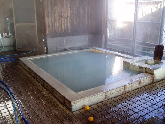 Matsukawaya Nasukogen Hotel: 白濁のいいお湯です