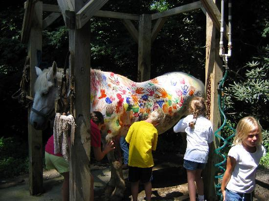 Clear Creek Guest Ranch: Finger Painting for the kids