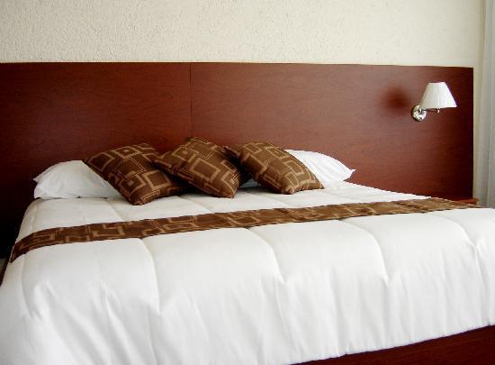 Hotel Aeropuerto Morelia: KING SIZE ROOM