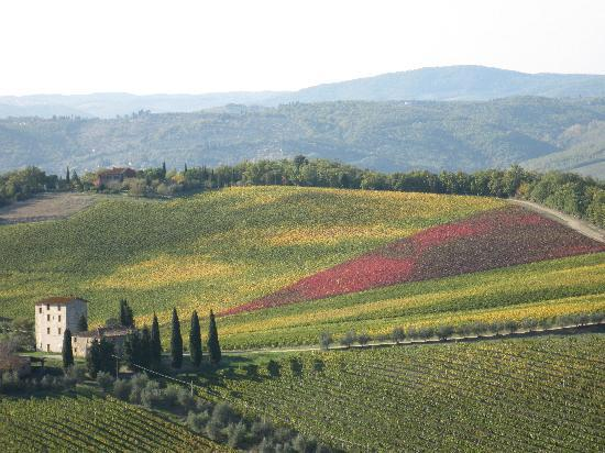 Castellina In Chianti, Italia: is this a painting??