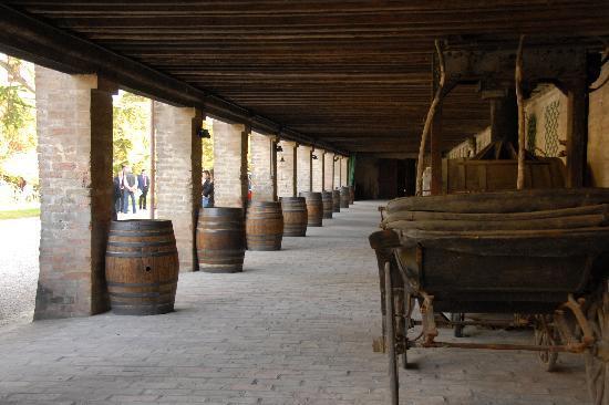 Castello di Roncade: the barrels