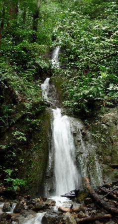 Carate, Costa Rica: waterfall