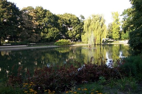 Parc Łazienki : Naturalistic-like landscape in a city park near to 'The tomb of the unknown soldier'. -Warzsawa-