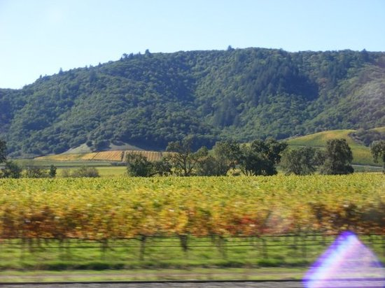 Napa Valley Winery Exchange商店