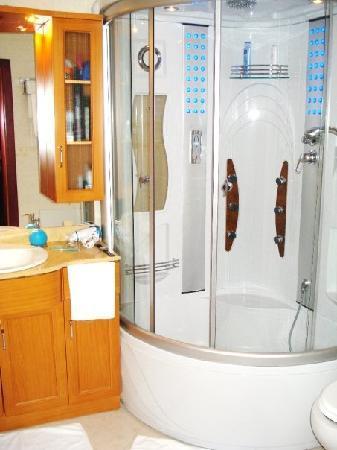 Hotel Prishtina: bathroom with `singing` shower