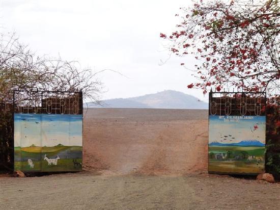Masai Mara L Ottava Meraviglia Del Mondo Mara River