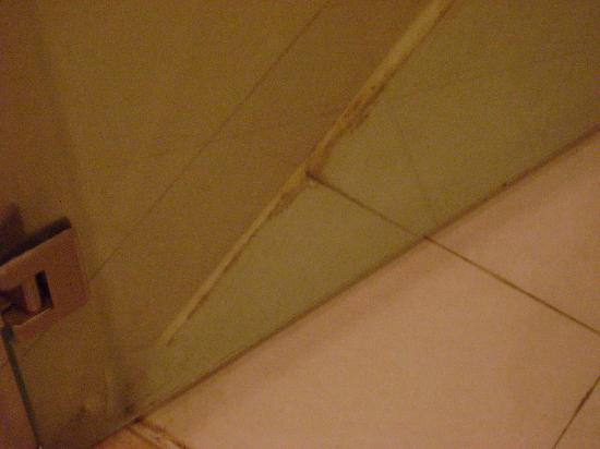 Vienna Hotel Guangzhou Sanyuanli: shower