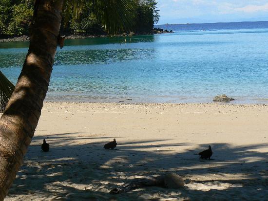 Isla de Coiba, Panama: Cove at cottages