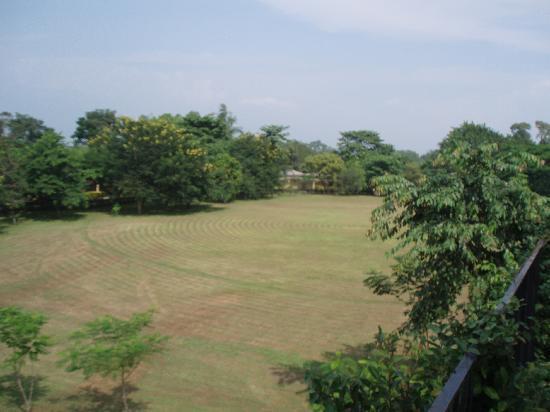 Sinclairs Retreat Dooars, Chalsa: Parkland setting
