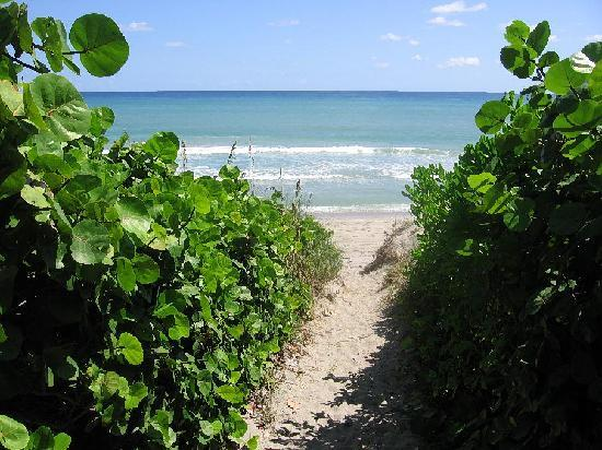Holiday Inn Express North Palm Beach - Oceanview: Your pathway to the Beach