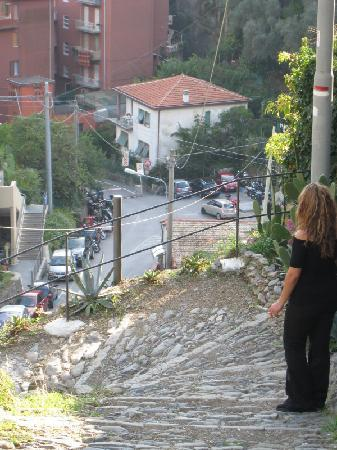 La Casa Dei Limoni: On the way down