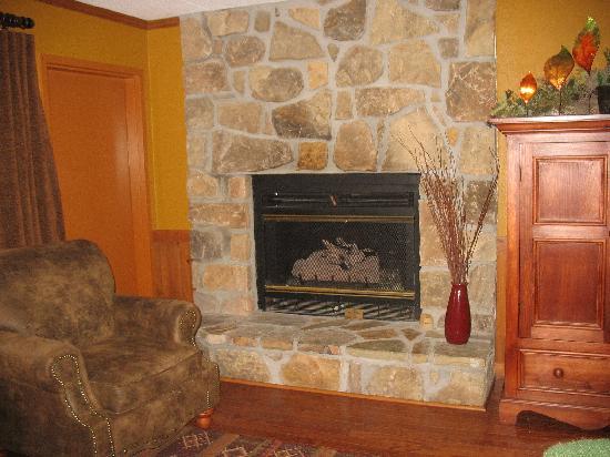جونسونز إن: Condo fireplace