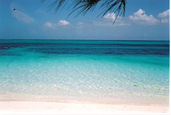 Providenciales: The Bight beach area at Smith's Reef on north coast