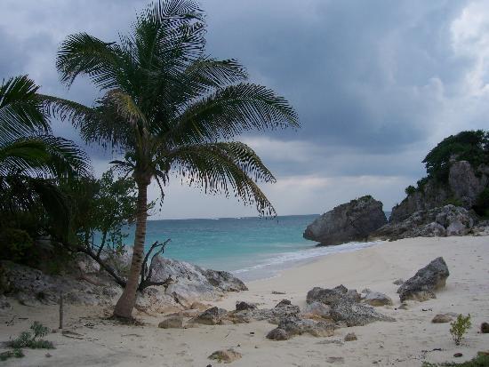 Grand Bahia Principe Coba : Mayan Ruins/Tulum Turtle Reserve Restricted Area