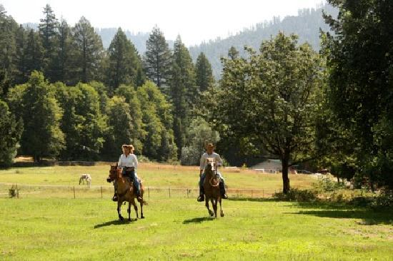 Marble Mountain Ranch - Family Guest Ranch: horse riding at California's guest ranch
