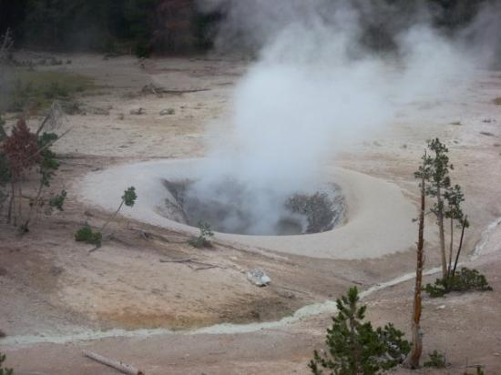 Fumarole At Sulphur Spring Picture Of Yellowstone