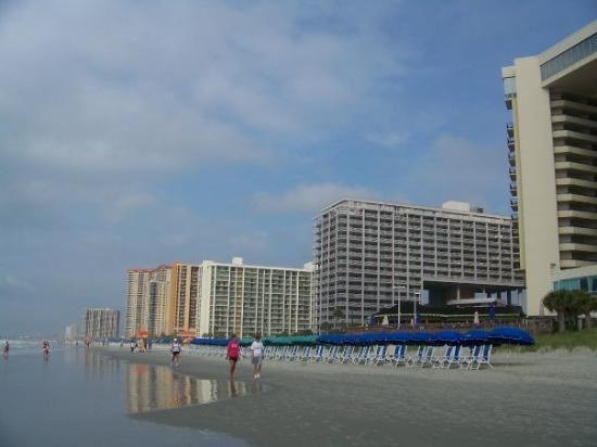 Myrtle Beach Rentals Oceanfront With Pool