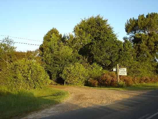 Four Fields Farm : Entrance from road.