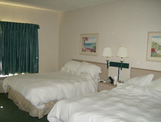 La Quinta Inn & Suites Sarasota I-75照片