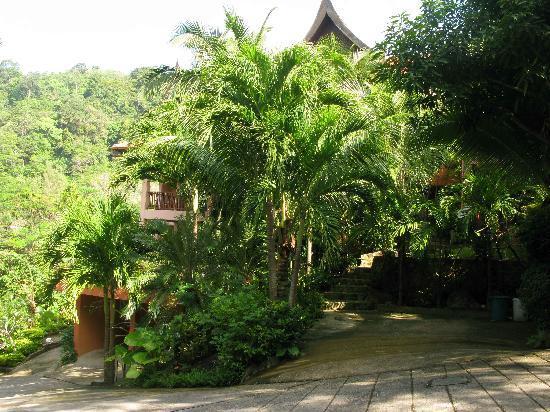 Karuna Meditation Center: Karuna YMC  building withing Nakatani Village.JPG