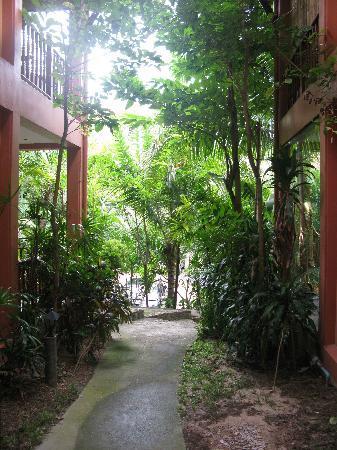 Karuna Meditation Center: KYMC.JPG