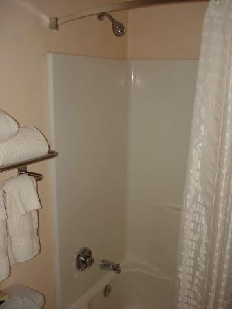 Candlewood Suites Jacksonville: Shower