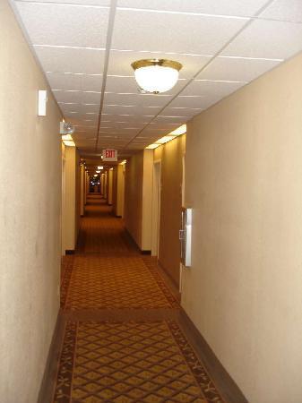 Candlewood Suites Jacksonville: Hall