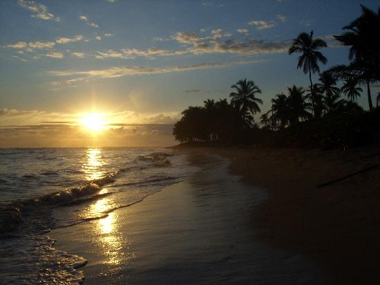 Sirenis Punta Cana Resort Casino & Aquagames: sunrise on the beach