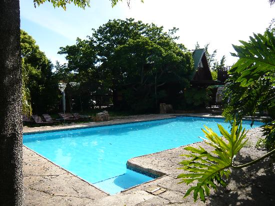 Tsitsikamma Lodge: Pool