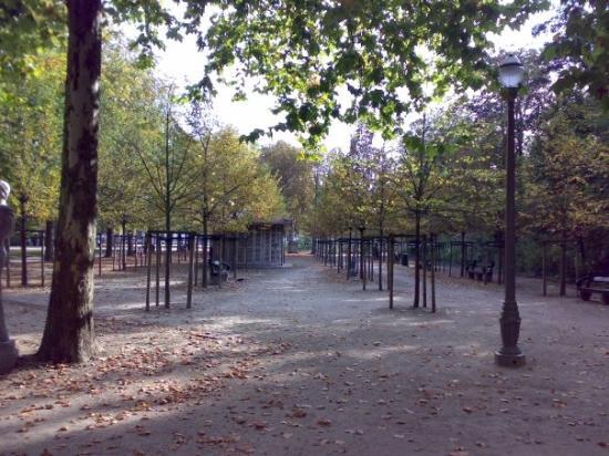 Parc de Bruxelles Photo