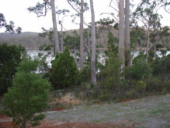 Port Arthur Holiday Park: View from deck (Deluxe Cabin)