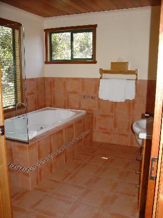 Snowgum bathroom