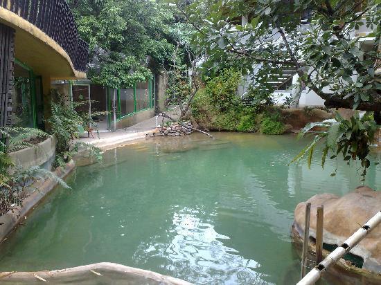 Huarn Jana Boutique Resort: Pool at Fondcome 2