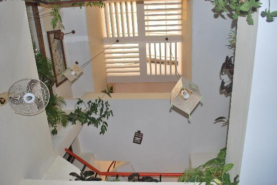 Noah's Ark Homestay: The Skylight over the dining area