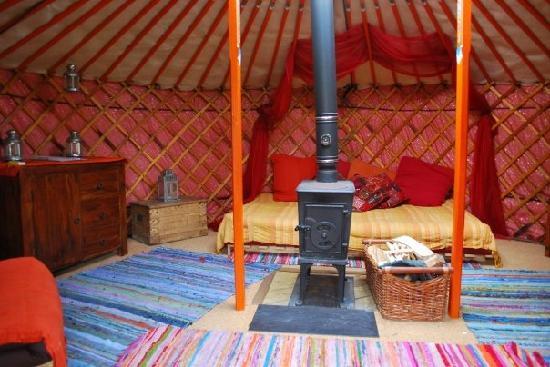 Strawberry Skys Yurts: yurt daytime
