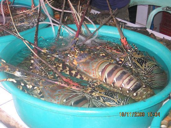 D' Talipapa Market: Fresh seafood