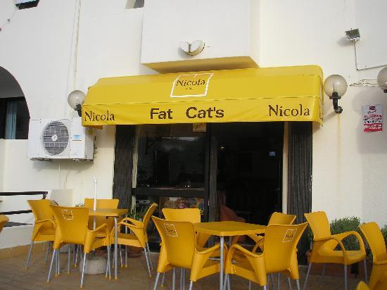 Fat Cat's: The bar from the sun terrace and pool area