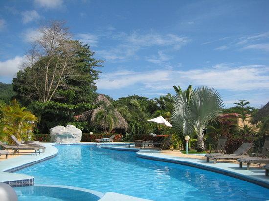 Hotel La Palmera : Pool