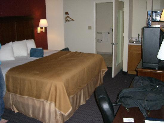 Howard Johnson Express Inn & Suites South Tampa Airport: room