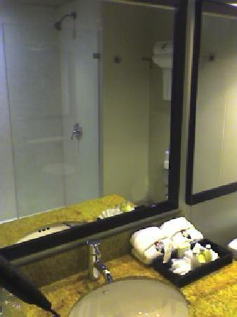 Hotel Real del Rio Tijuana: Bathroom with shower