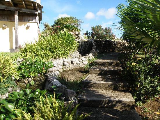 Maca Bana: Path with waterfall leading to hilltop
