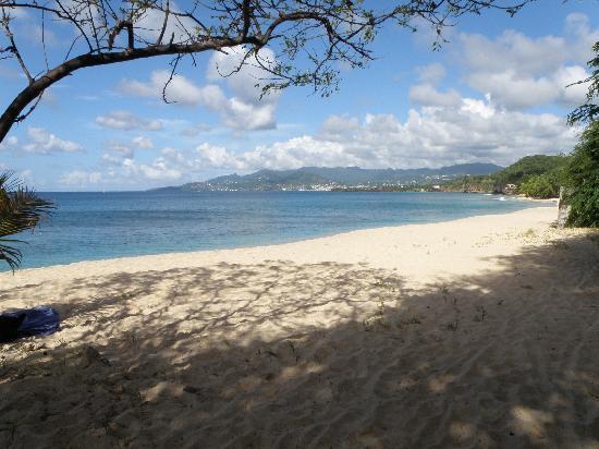 Maca Bana: Magazine beach to St. George's