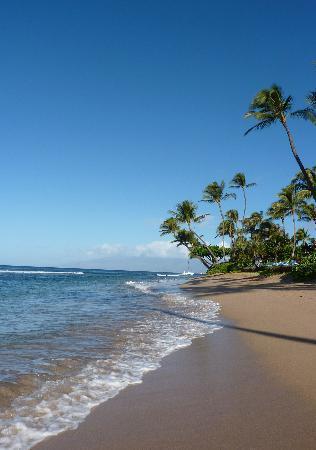 Marriott's Maui Ocean Club  - Lahaina & Napili Towers: the beach