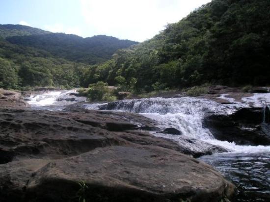 Iriomote Island - Taketomicho Iriomote-jima, Yaeyama-gun Resmi - TripAdvisor