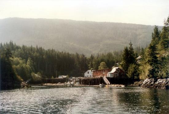 Telegraph Cove Resort 사진