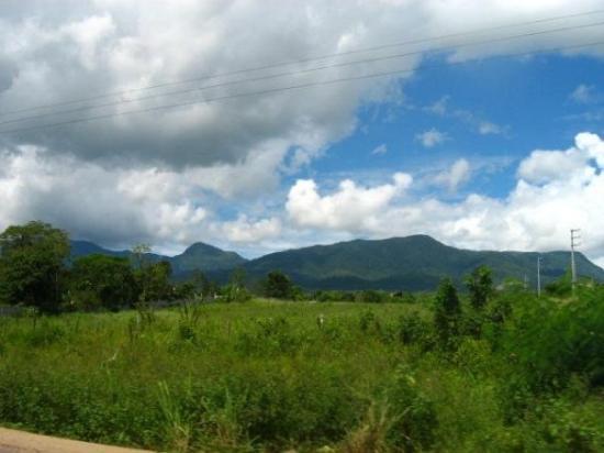 Foto de Tarapoto
